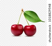 realistic cherry with leaf.... | Shutterstock .eps vector #1018829548