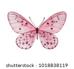 Watercolor Pink Butterfly....