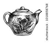 sketch hand drawn teapot.... | Shutterstock .eps vector #1018858768