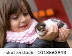 Stock photo little girl in the hands of the child kitten baby a cat 1018863943