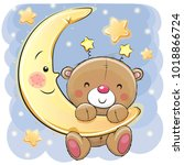 cute cartoon teddy bear on the... | Shutterstock . vector #1018866724