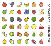 cute fruit filled outline icon... | Shutterstock .eps vector #1018890700