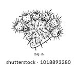 tropical fruits  illustration... | Shutterstock .eps vector #1018893280