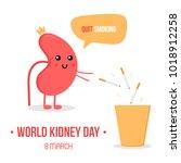 world kidney day vector... | Shutterstock .eps vector #1018912258