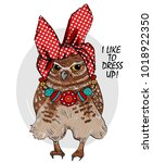 vector owl with headscarf and... | Shutterstock .eps vector #1018922350