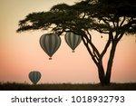 hot air ballon safari in the... | Shutterstock . vector #1018932793