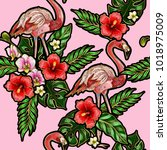 seamless pattern with flamingo  ... | Shutterstock .eps vector #1018975009