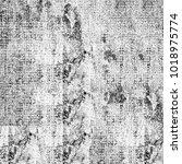 texture grunge monochrome.... | Shutterstock . vector #1018975774