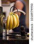 portland  usa   september 15... | Shutterstock . vector #1018979950