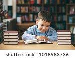 preschool european boy is...   Shutterstock . vector #1018983736