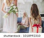 little cute girl  her... | Shutterstock . vector #1018992310
