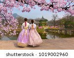 cherry blossom in spring with... | Shutterstock . vector #1019002960