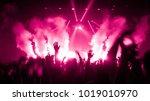 happy people dance in nightclub ... | Shutterstock . vector #1019010970