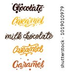 chocolate and caramel hand... | Shutterstock .eps vector #1019010979