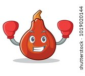 boxing red kuri squash... | Shutterstock .eps vector #1019020144