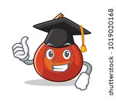 graduation red kuri squash... | Shutterstock .eps vector #1019020168