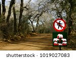 road with warning signs ... | Shutterstock . vector #1019027083