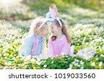 easter egg hunt in spring... | Shutterstock . vector #1019033560