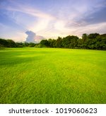 beautiful green grass field... | Shutterstock . vector #1019060623