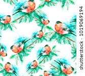 seamless watercolor pattern... | Shutterstock . vector #1019069194