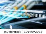fiber optical connector... | Shutterstock . vector #1019092033