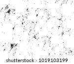 grunge black texture | Shutterstock .eps vector #1019103199