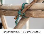 nylon rope knot on the bamboo... | Shutterstock . vector #1019109250