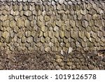 Old Wood Roof Background Texture