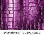 Dark Violet Alligator Patterned ...