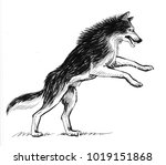 playing wolf. black and white... | Shutterstock . vector #1019151868