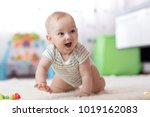 crawling funny baby boy in... | Shutterstock . vector #1019162083