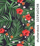seamless hand drawn tropical... | Shutterstock .eps vector #1019165248