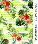 decorative colorful stripe...   Shutterstock .eps vector #1019169700