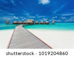 overwater villas on the... | Shutterstock . vector #1019204860