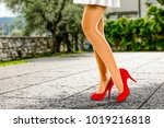 spring time and slim woman legs ... | Shutterstock . vector #1019216818