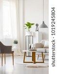 wooden  round table between... | Shutterstock . vector #1019245804