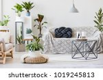 pouf next to table and sofa... | Shutterstock . vector #1019245813