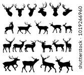 silhouette deer with great... | Shutterstock .eps vector #1019266960