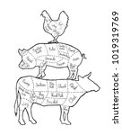 part of meat. cut of meat set.... | Shutterstock .eps vector #1019319769