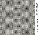 abstract monochrome irregular... | Shutterstock .eps vector #1019320708