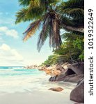 beautiful white sandy beach... | Shutterstock . vector #1019322649