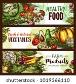vegetable  fruit and mushroom... | Shutterstock .eps vector #1019366110