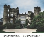 gloomy picture of malahide... | Shutterstock . vector #1019369314