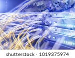fiber optical connector... | Shutterstock . vector #1019375974