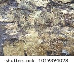 gild background texture the... | Shutterstock . vector #1019394028