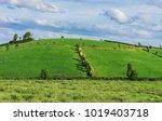 blue sky and green fields  in...   Shutterstock . vector #1019403718