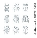 a set of simple outline beetle... | Shutterstock .eps vector #1019410480