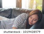 closeup image of a beautiful... | Shutterstock . vector #1019428579