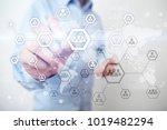 organisation structure chart ...   Shutterstock . vector #1019482294