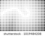 abstraction pixels black and... | Shutterstock . vector #1019484208
